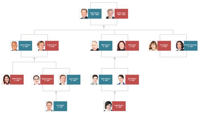 Family Tree Template – Family Tree Example
