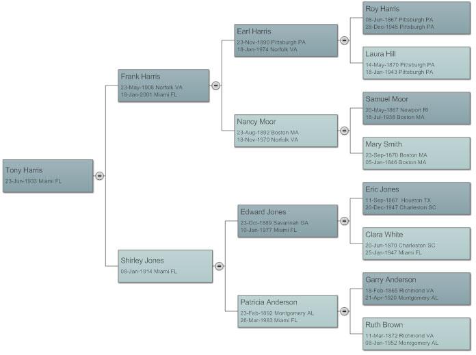 Family tree horizontal