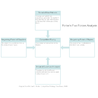 Five Forces Analysis Example - 1
