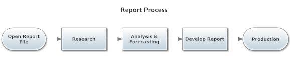 Report process