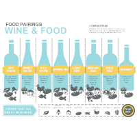 Wine and Food Pairing Infographic
