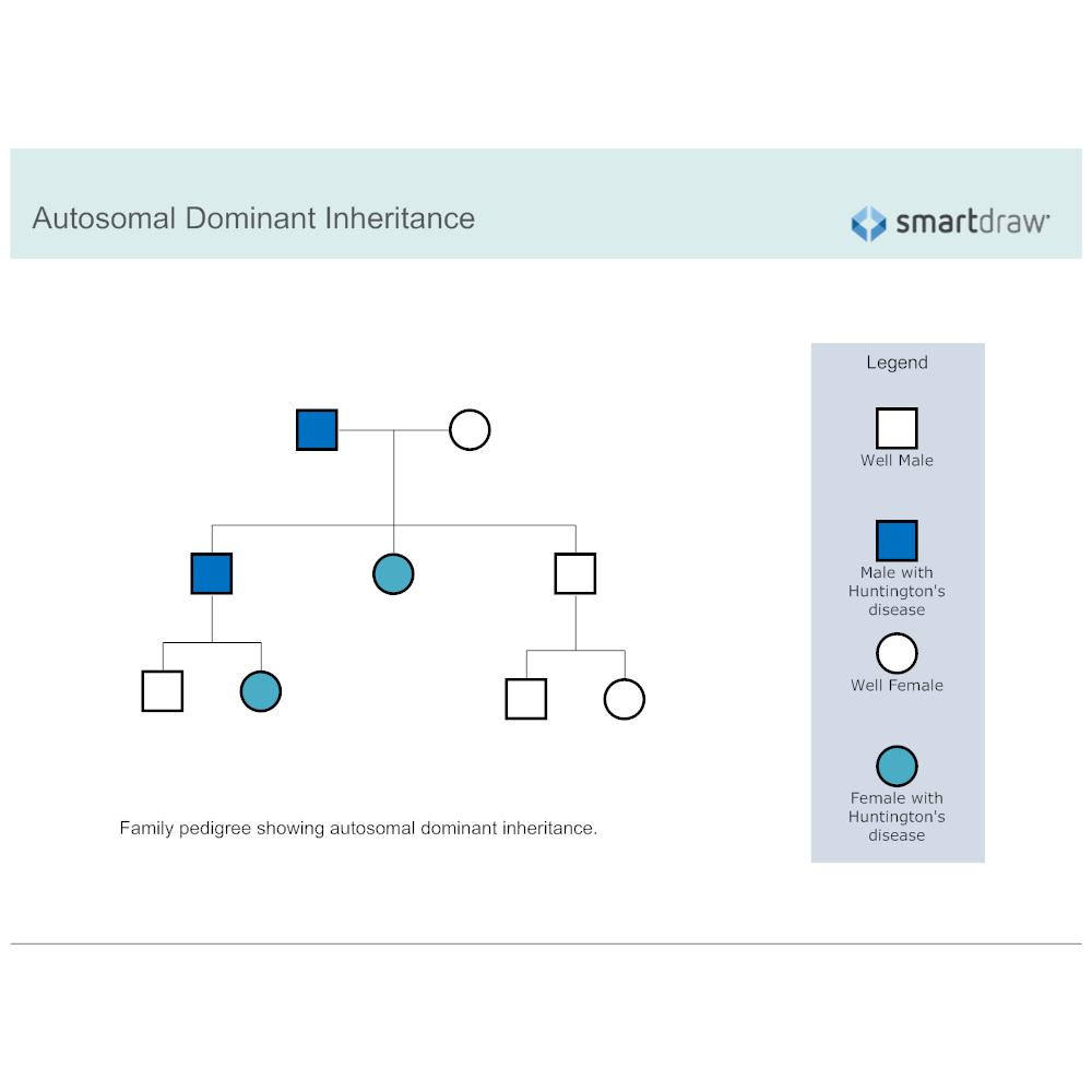 Example Image: Autosomal Dominant Inheritance