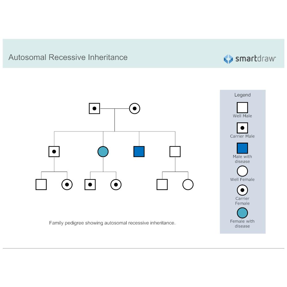 Example Image: Autosomal Recessive Inheritance