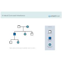 X-linked Dominant Inheritance
