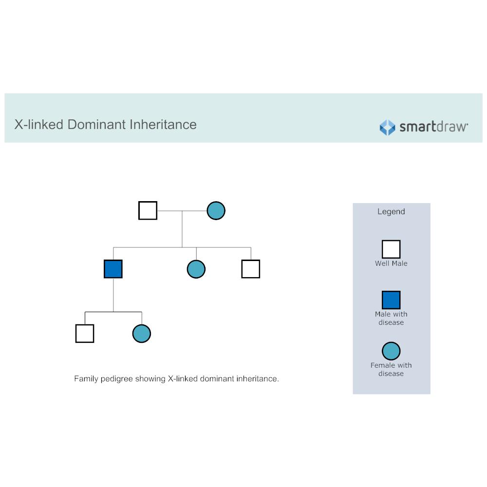 Example Image: X-linked Dominant Inheritance