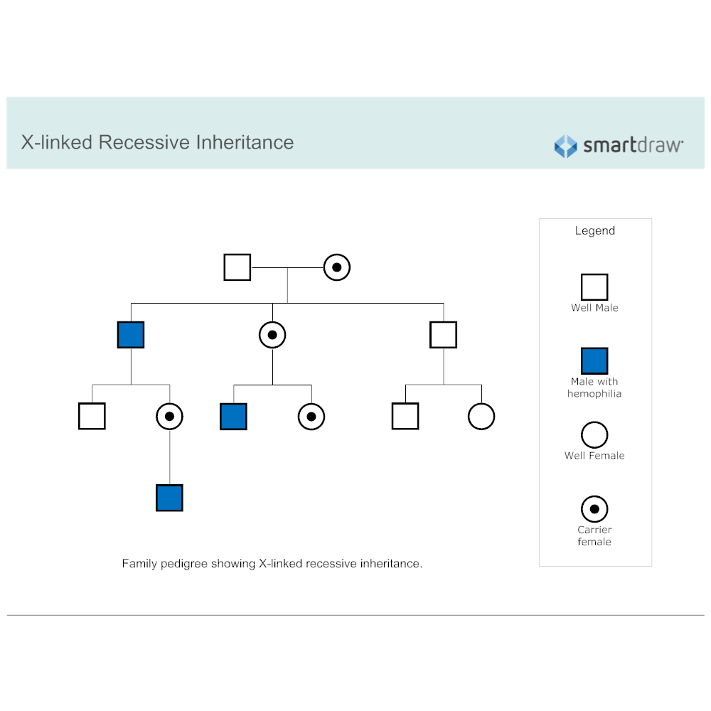 Example Image: X-linked Recessive Inheritance