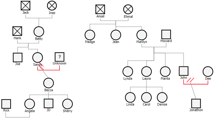 Create Kinship Diagram Online Enthusiast Wiring Diagrams