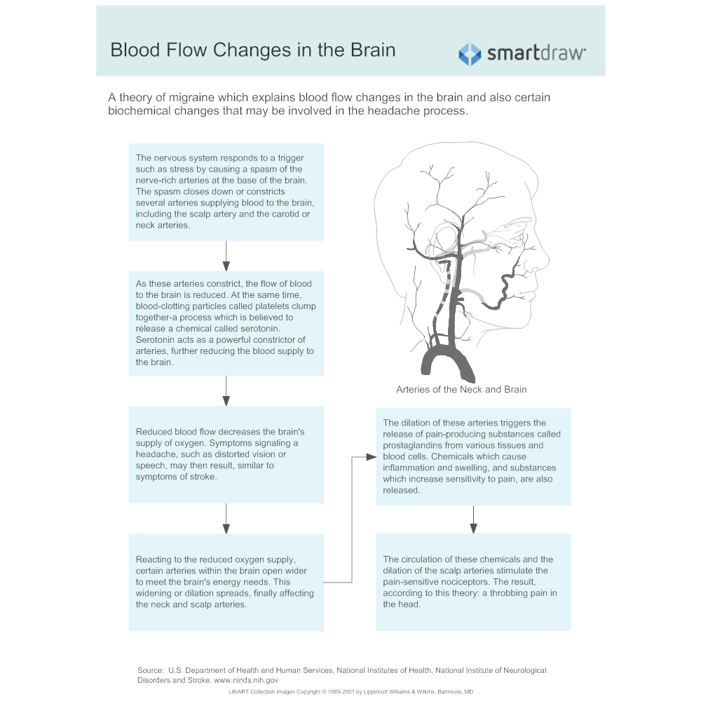 Example Image: Blood Flow Changes in the Brain