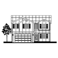 House Elevation in B&W