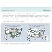 Equine Encephalitis