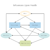 Health Influence Diagram