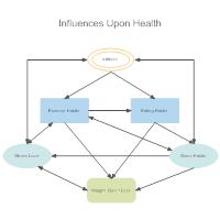 Health Influence Diagram