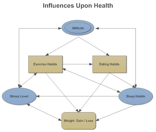 influence diagram   what is an influence diagraminfluence diagram