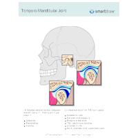 Temporo-Mandibular Joint