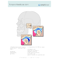Temporo-Mandibular Joint