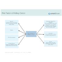Risk Factors of Kidney Cancer