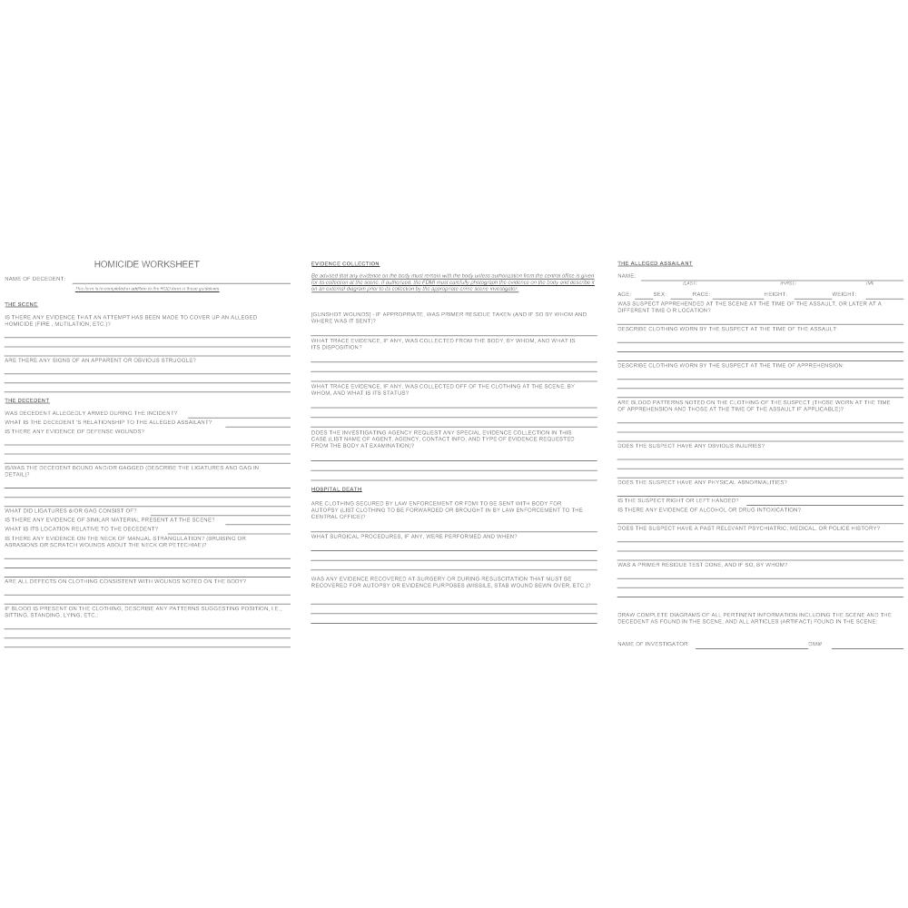 Example Image: Homicide Worksheet