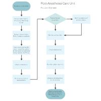 Post-Anesthesia Care Unit Flowchart