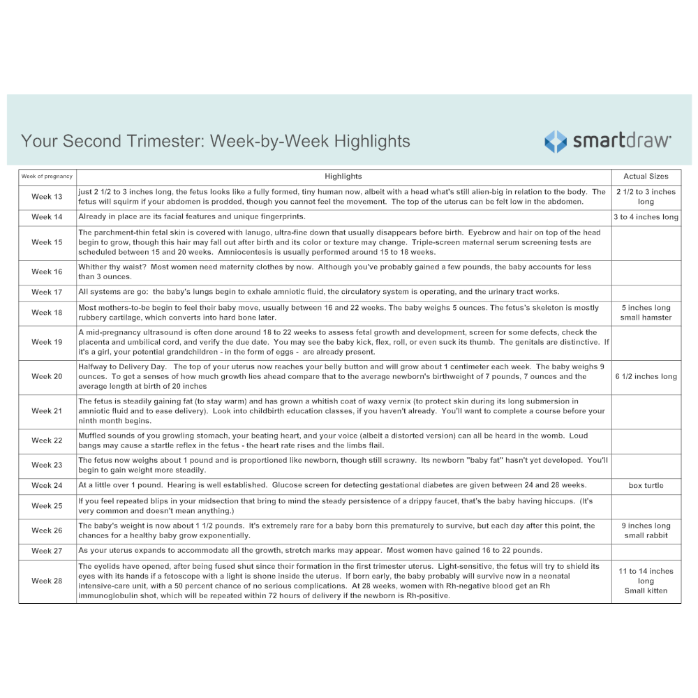 Example Image: Week-by-Week Highlights - Second Trimester