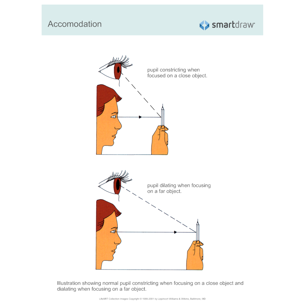 Example Image: Accommodation