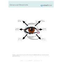 Extraocular Movements