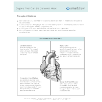 Organs That Can Be Donated - Heart