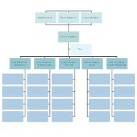 Hospital Organizational Chart