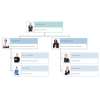 Organizational chart examples