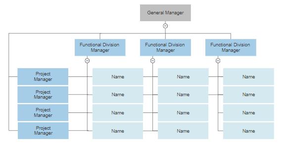 Matrix organizational chart