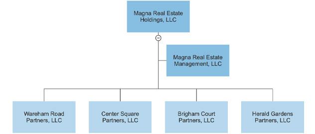 LLC Org Chart
