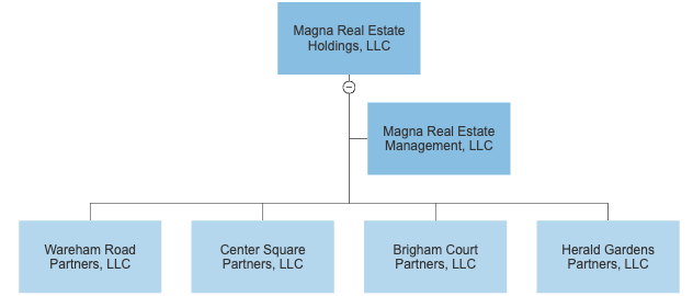 Organizational chart showing corporate entitities