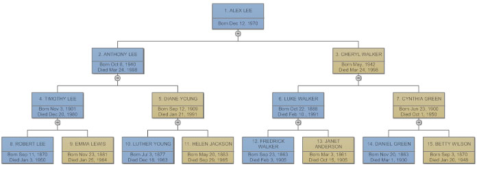 Basic pedigree chart