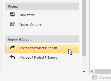 MS Project Integration