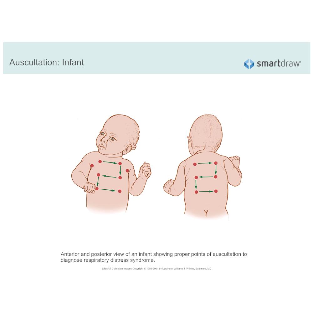 Example Image: Auscultation - Infant