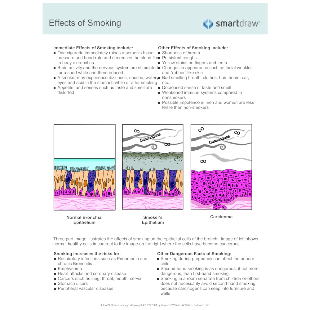 Example Image: Effects of Smoking