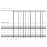 Requirements Feature Matrix Template