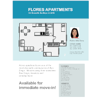 Apartment - Real Estate Flyer