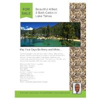 Cabin - Real Estate Flyer
