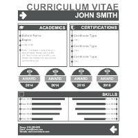 Curriculum Vitae 01