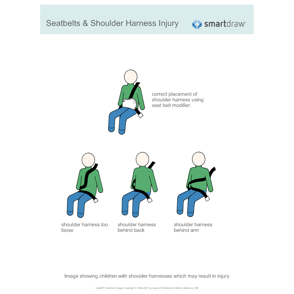 Example Image: Seatbelts & Shoulder Harness Injury