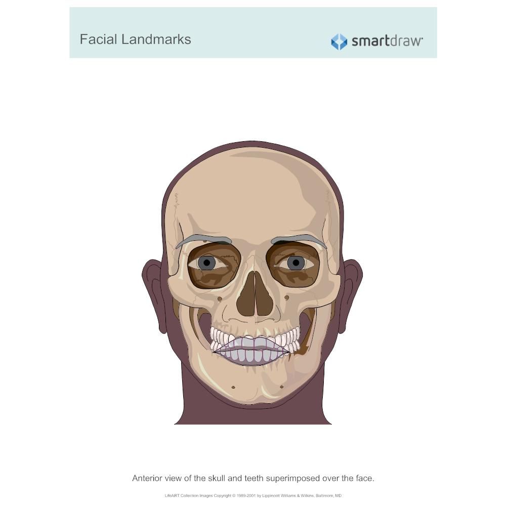 Example Image: Facial Landmarks