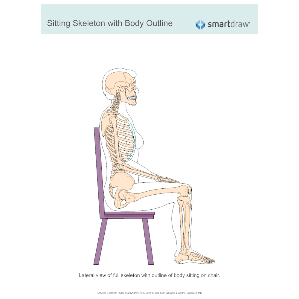 Sitting Skeleton With Body Outline