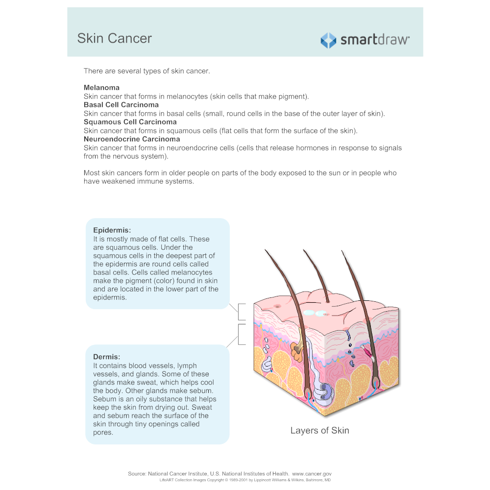 Example Image: Skin Cancer