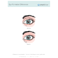 Eye Formation Differences