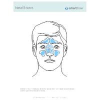 Nasal Sinuses