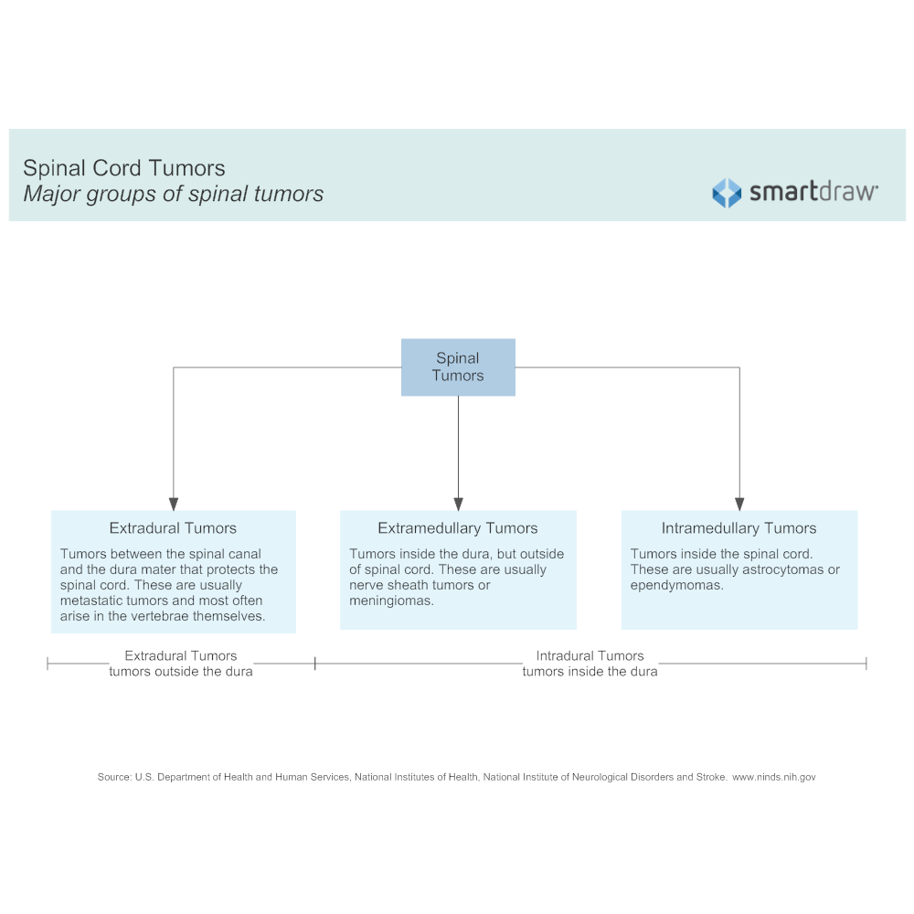 Example Image: Major Groups of Spinal Cord Tumors