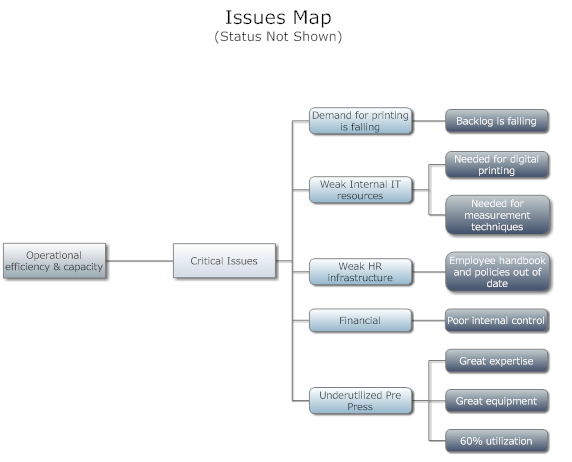 Strategic Plan Issues Map