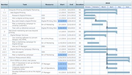 Operational Plan Project Chart
