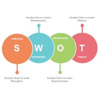 Analysis SWOT 08