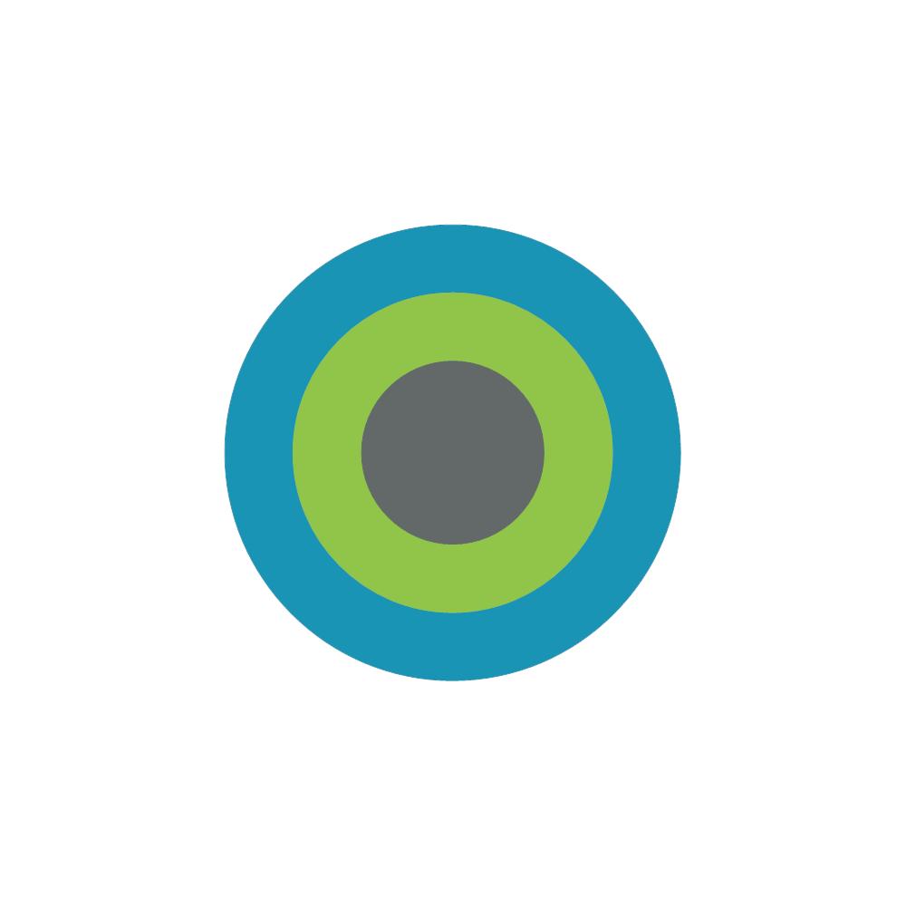 Example Image: Target Diagram (Circle)